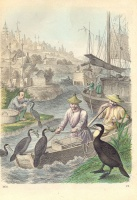 132.     Unknown engraver : (Cormorant Fishing.)