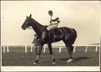 217.     [SELMECZY, LÁSZLÓ (Ladislaus v. Selmeczy) : Jockey's Photo Album of Horse Racings from 1920 to 1935.]